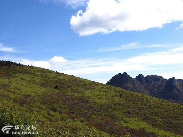 发几张秦岭终南山高山草甸的照片 - 翠华山 - 翠华山的博客