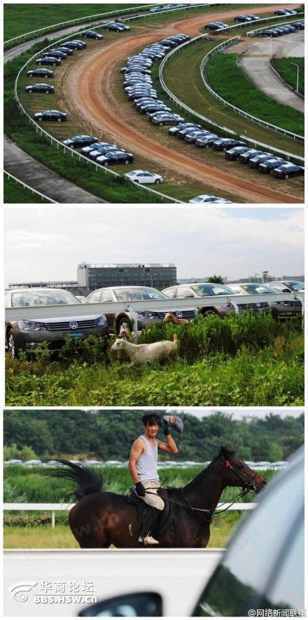 南京投资5亿国际赛马场成停车场 到处都是浪费