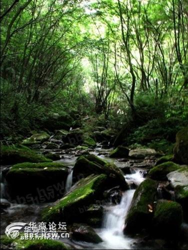日丛林幽谷休闲耿峪避暑一日活动