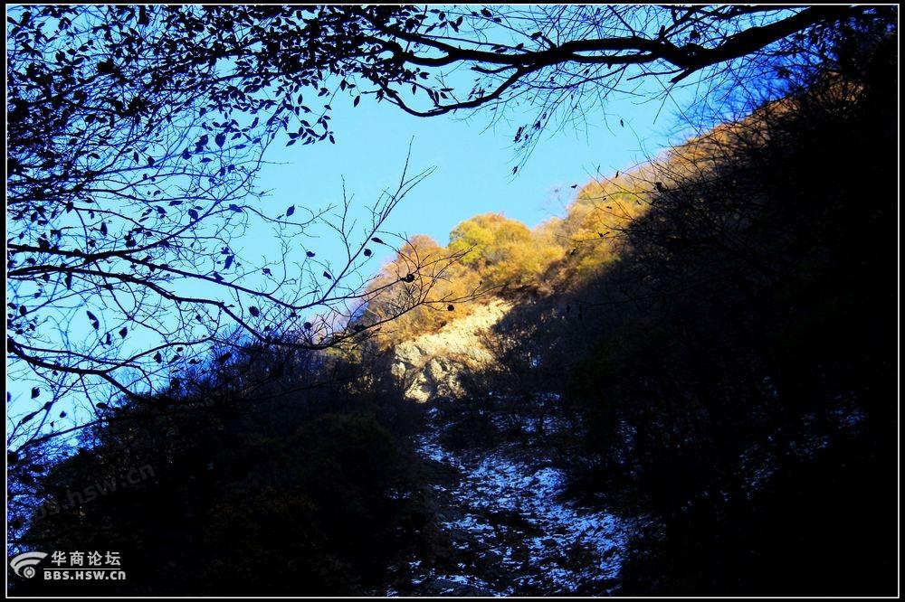 涝峪大山岔