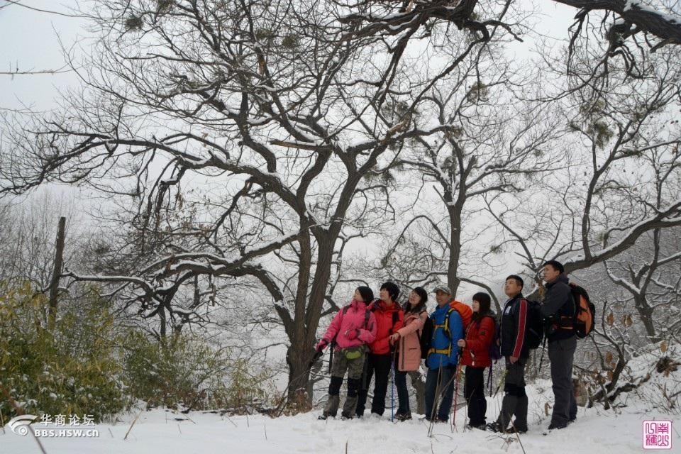 白石峪里打雪仗,童话世界享安静! 【青春足迹户外】