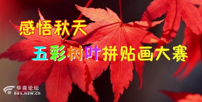 感悟秋天 亲子五彩树叶拼贴画大赛 比试下顺手赢奖品
