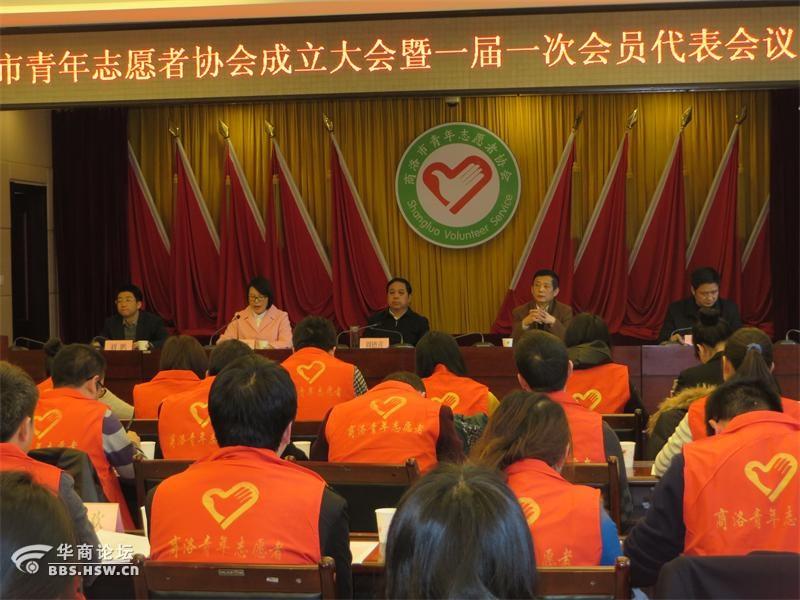 商洛市青年志愿者协会成立